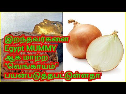 வெங்காயத்தின்/Interesting facts about Onions in tamil-Day 2 Day INFO