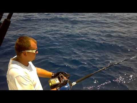 Tile Fishing Stuart, FL