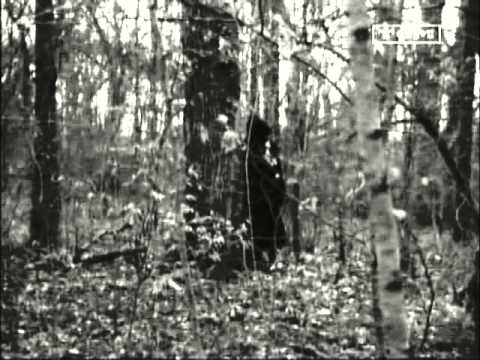 Download Eye of the Devil (1966) - Deborah Kerr - David Niven
