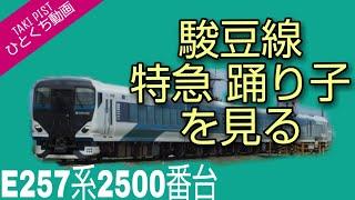 駿豆線 E257系 特急踊り子を見る
