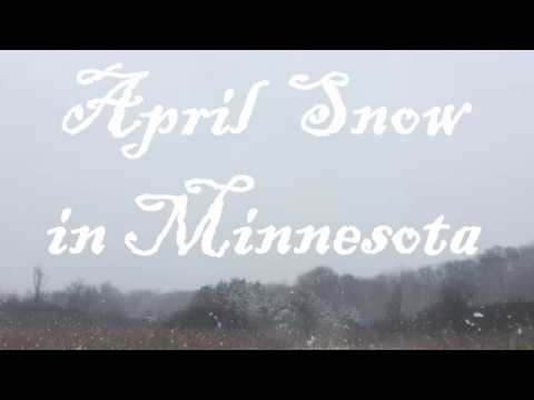 April Snow in Minnesota
