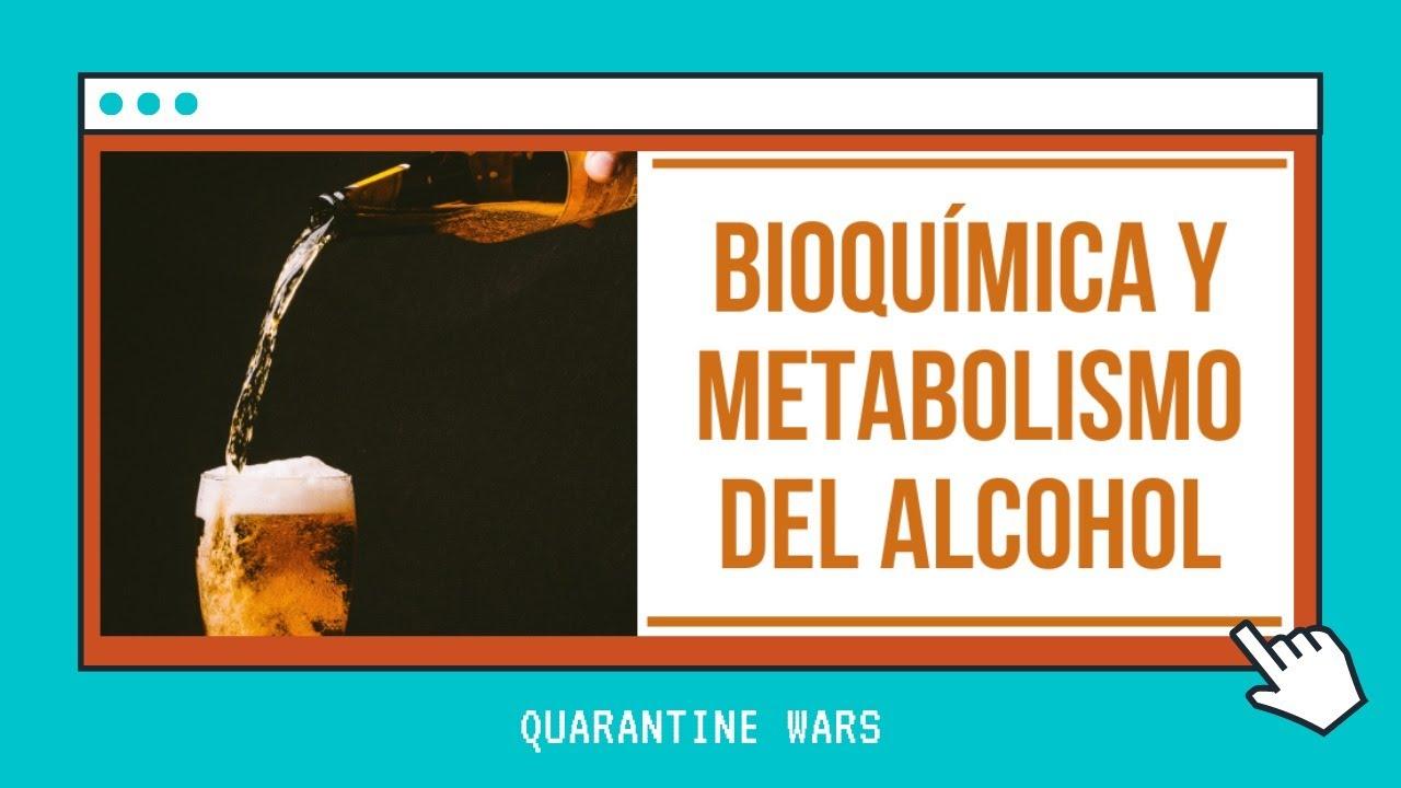 Necesitas un Metabolismo basale ?
