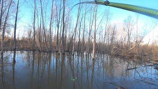 В деревьях мощная рыба и сходы Поймала ВСЁ РАВНО Рыбалка 2021