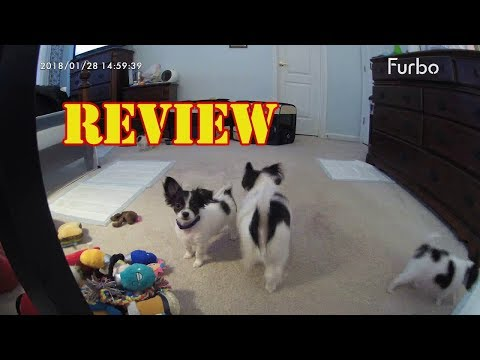 review-furbo-dog-camera-treat-tossing-full-hd-wifi-pet-camera-and-2-way-audio-designed-for-dogs-2018