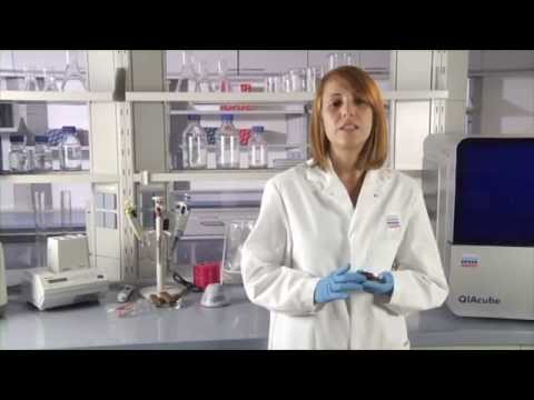 Food Safety Testing Solutions by QIAGEN Part 2 - YouTube