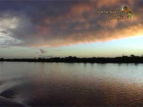 PARAGUAY SALVAJE: FAM Tour 2013 al Pantanal Paraguayo
