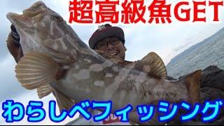 アジを泳がせて幻の高級魚に変えよう! thumbnail