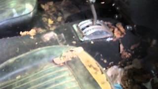 1969 ford mustang sat for 35 + years still runs!!! p1