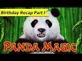 Fred's Birthday! 🎂 Happy & Prosperous 💰 Panda Magic 🐼 Fu Dao Le 👶🏽 The Slot Cats 🎰😸😺