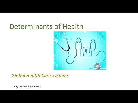 HSS1101D - 11.2 global health care systems