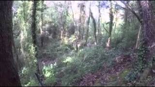 Опасная охота на кабана видео