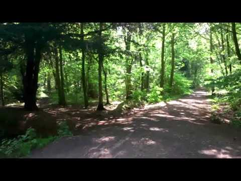 Sandal Beat Wood Nature Reserve Doncaster 2014