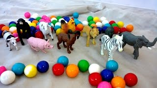 RAINBOW COLORFUL GUMBALL CANDY Sliding FUN-Animal TOY Surprises- LION,ALLIGATOR,MONKEY,CRAB,WOLF,COW