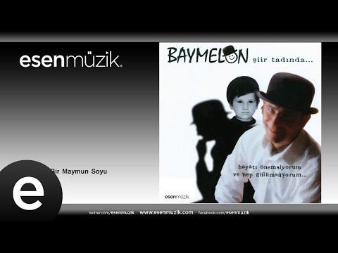 Baymelon - Beyoğlu'nda Bir Maymun Soyu
