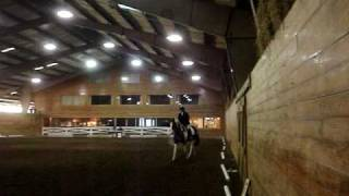 Easy Swinger schooling dressage show Chagrin Valley Farms Ohio 1-31-10 Intro A
