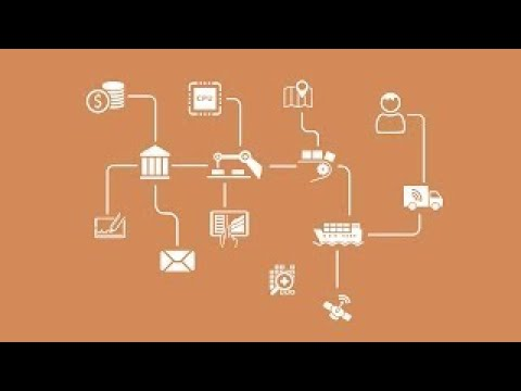 Understanding the Networked Economy