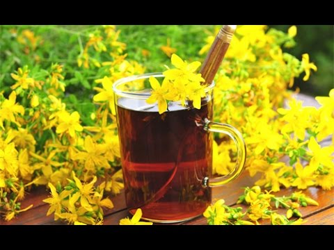 St. Johns Wort - Reviews, Facts & Warnings