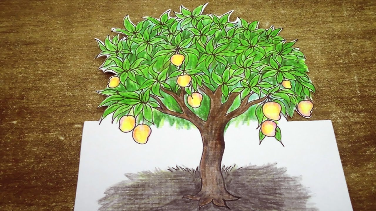 Cartoon Mango Tree Drawing – Grab all of the markers and crayons and let your kiddos get to work christmas trees can be rather simple to draw, and this youtube video represents that well.