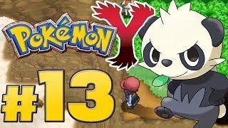 Let's Play Pokémon Y - Part 13 - Ein Shiny kurz vor Petrophia!