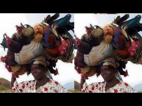 Download ALKALI ZANGINA 1&2 LATEST HAUSA FILM /muryar Hausa tv