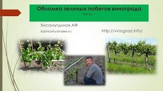 Обломка винограда, часть 1 Хисамутдинов АФ, Красохина СИ