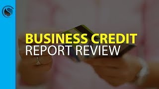 Real Business Credit Report Review