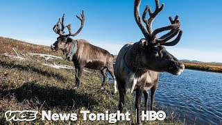 """Drunken Forests"" In Alaska Are Another Sign Of Melting Permafrost (HBO)"