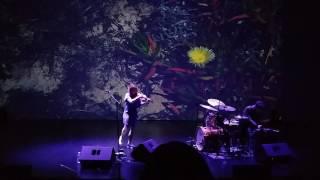 Sarah Neufeld - Hero Brother (Live)