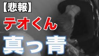 テオくんが救急車に運ばれる直前の生放送 thumbnail