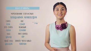 Видеоуроки «Elifbe». Чередование согласных звуков