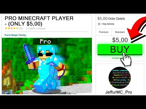 HIRING A PRO MINECRAFT PLAYER FOR $5!