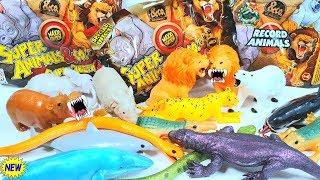Super Animals Maxi НОВИНКА Де Агостини 2019 распаковка видео обзор ИГРУШКИ (Супер звери &Ко Макси)