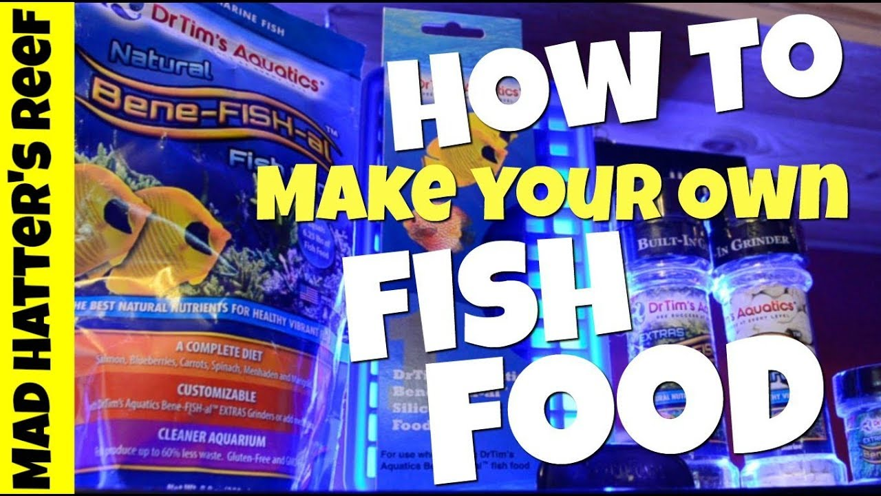 Make Your Own Fish Food Reef