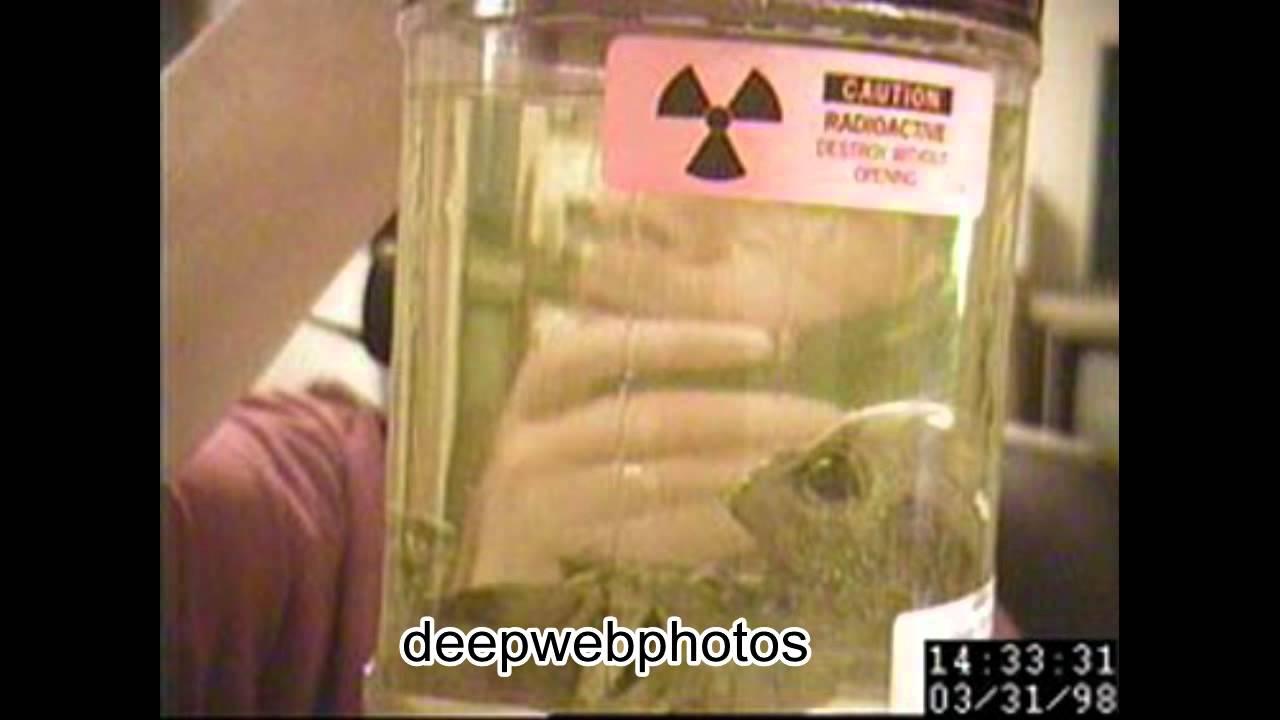 Alien photos from the deep web doovi
