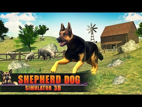 Shepherd Dog Simulator 3D - Android Gameplay HD
