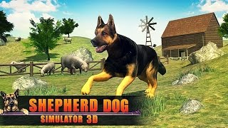 Shepherd Dog Simulator 3D - Android Gameplay HD