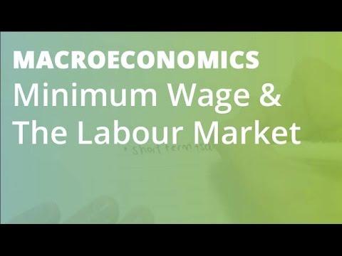 Minimum Wage & The Labour Market | Macroeconomics
