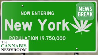 New York Legalizes Adult Use Cannabis Sales