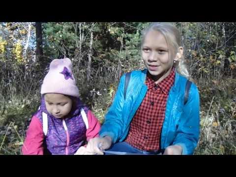 Хэллоуин квест для детей | Скрепыши в таинственном лесу