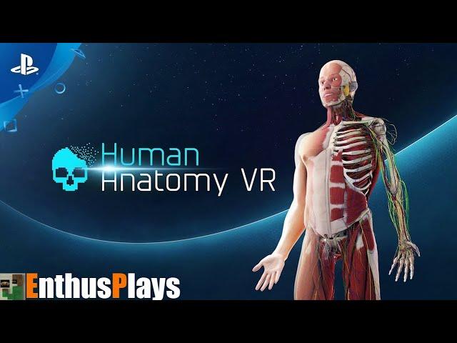 Human Anatomy VR (PS4|PSVR) - EnthusPlays | GameEnthus