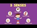 Human Sense Organs   Learn about five Senses