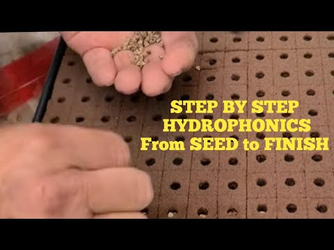 Hydroponic Seed to Finish STEP BY STEP