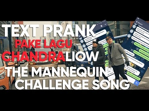 Text PRANK SAHABAT Pake Lagu CHANDRALIOW - THE MANNEQUIN CHALLENGE SONG (TIM2ONE)