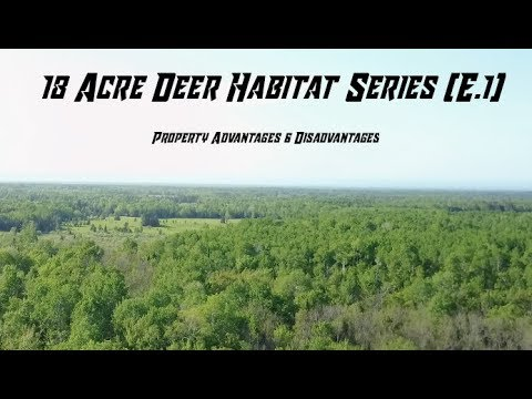18 Acre Deer Habitat Series (E.1)  -  Property Advantages & Disadvantages