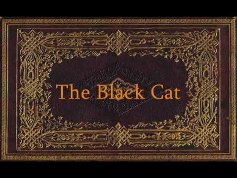 Edgar Allan Poe - The Black Cat - YouTube