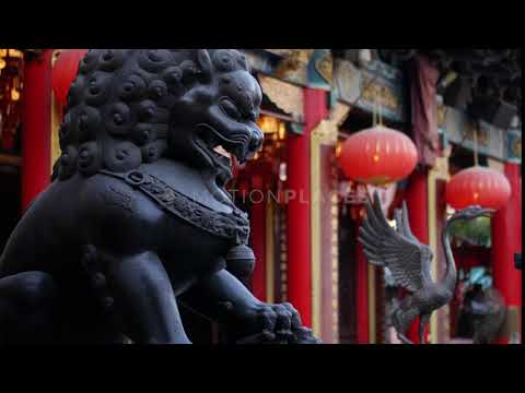 Hong Kong Temple Lion Statue Stock Footage