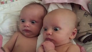 10 Melhores Vídeos Engraçados Do Bebê