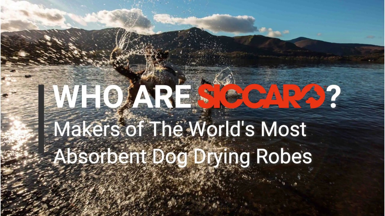 Who are Siccaro? Welcome to the Siccaro Brand - The best dog drying robes in the world (Eng)