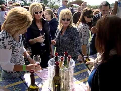 Chesapeake Virginia Wine Festival 2010