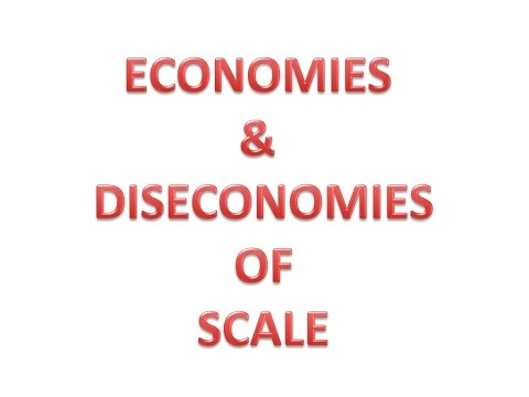 Economies & Diseconomies of Scale (Hindi)